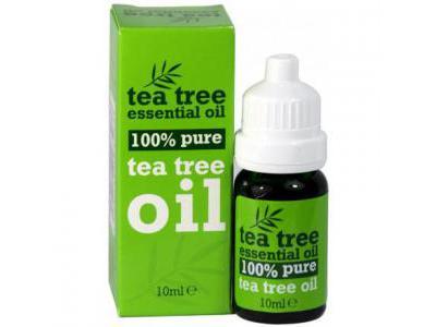 TEA TREE Olejek z drzewa herbacianego 10 ml